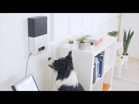7 Mind-Blowing Pet Gadgets That You've probably Never Seen Before...