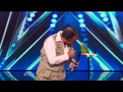 America's Got Talent S09E06 Joe the Birdman & Tika Talking Bird Act