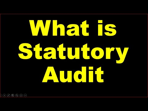 Statutory Audit/ Company Act Audit/Annual Audit/ Stat Audit