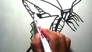How to Draw a Butterfly (Cara Menggambar Kupu-kupu)