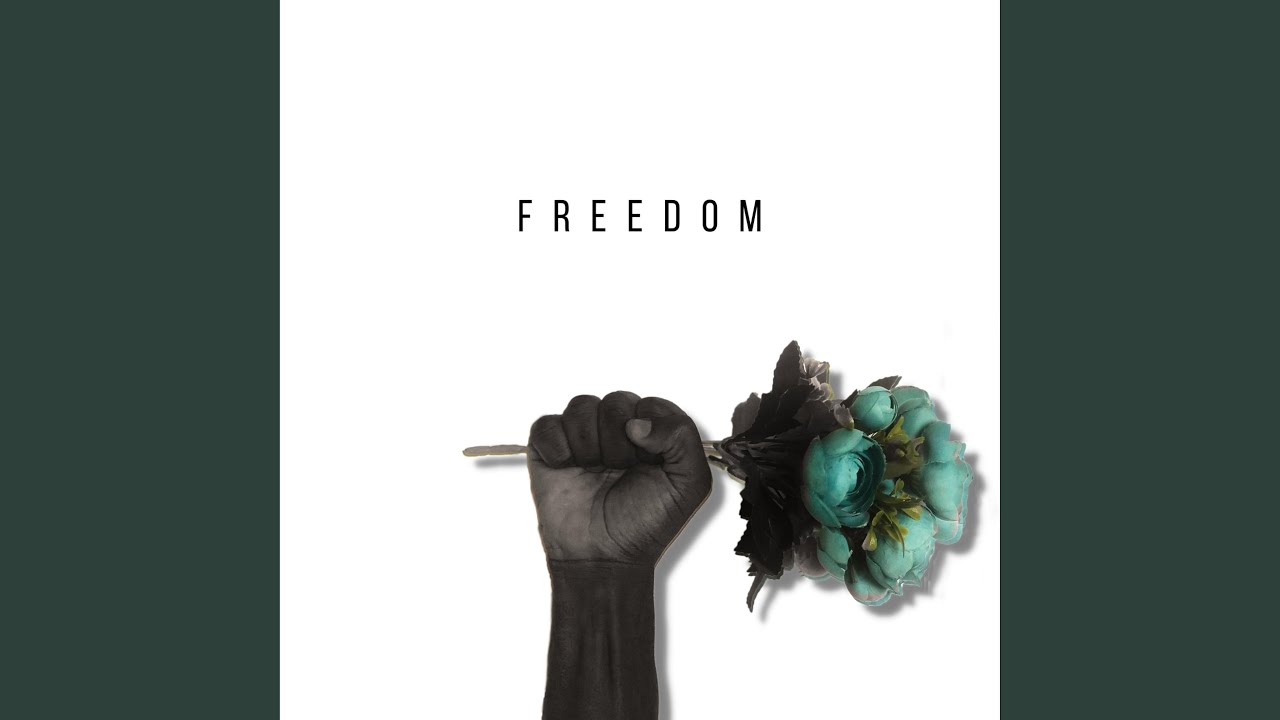 Download Freedom