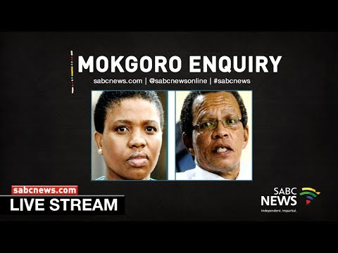 Justice Mokgoro Enquiry, 28 February 2019
