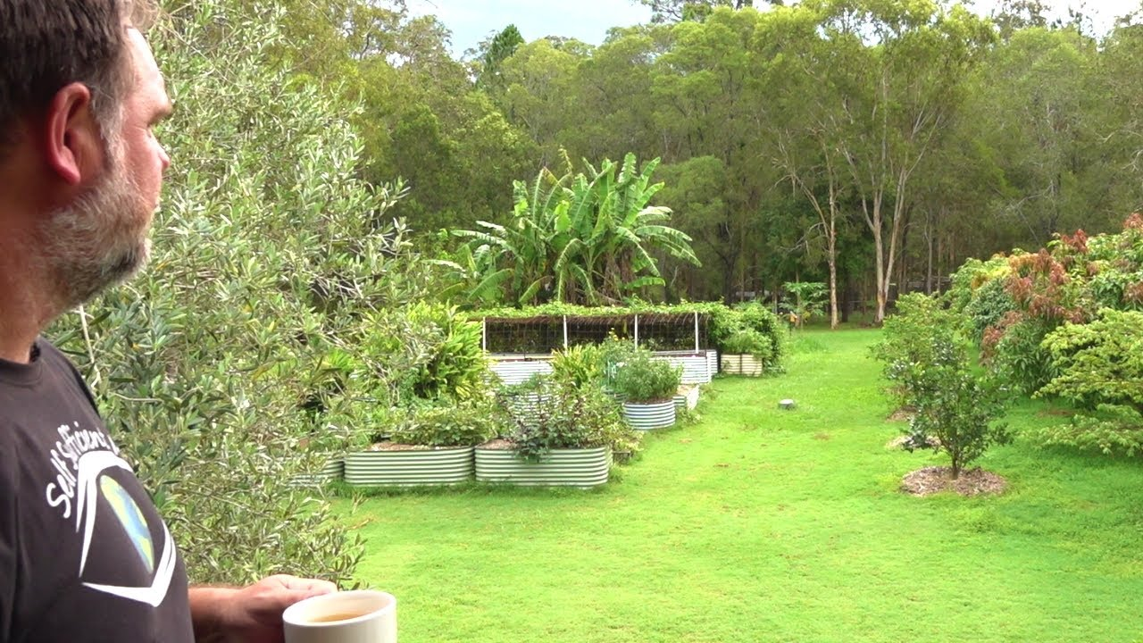 6 Important Things That Make Our Food Garden So Successful Youtube