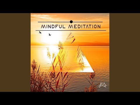 Mindfulness Meditation (Relaxation Exercise)