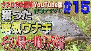 【#15】ナスDの大冒険YouTube版!南米アマゾン 獲った電気ウナギその場で喰らう編/Crazy Director 's  Gigantic Electrical eel Caught ナスd 検索動画 8