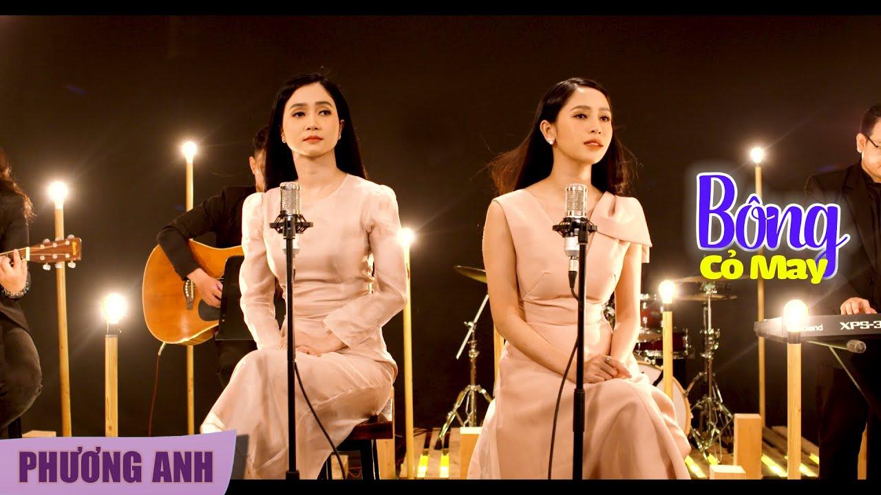 Bông Cỏ May - Phương Anh & Phương Ý (Official 4K MV)