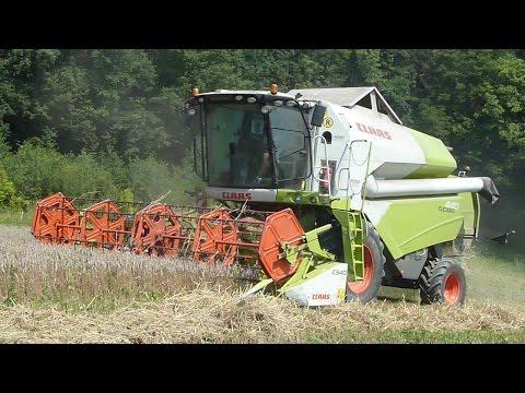 Lohnmaschinen Gölles - Getreide-Ernte - Claas Tucano 440 - Claas C540 Klappschneidwerk