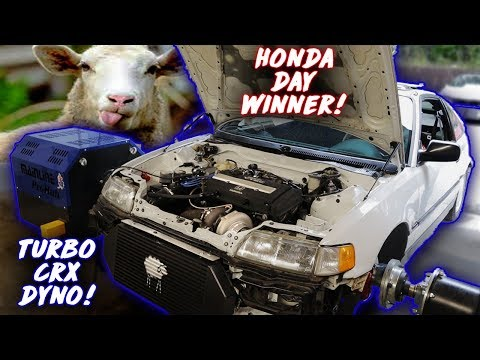 Clean CRX W/ Sheepey Built Turbo Kit Hits The Dyno Before Winning Honda Day!