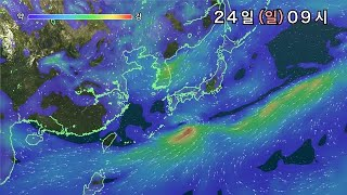 WeatherAnimation WIND(KR)