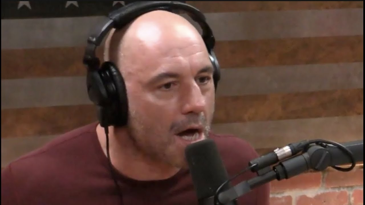 Joe Rogan Rants About the Current State of Politics