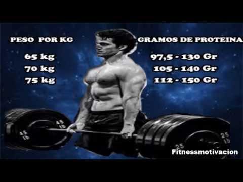 cuantos gramos de proteína necesito al dia