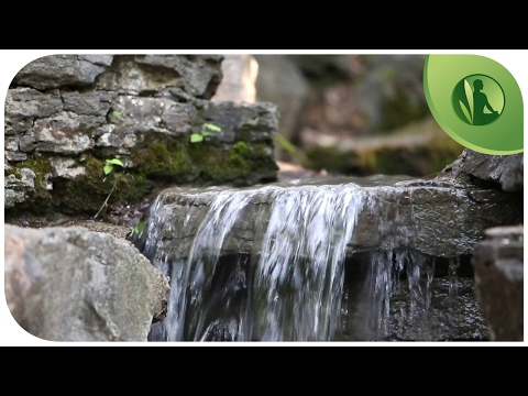 Nature Sounds: Music for Deep Relaxation with Flowing Water and Birds