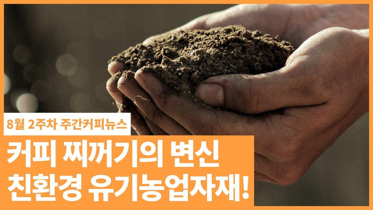 커피 찌꺼기의 변신!! / 8월 2주 주간커피뉴스, 커피TV