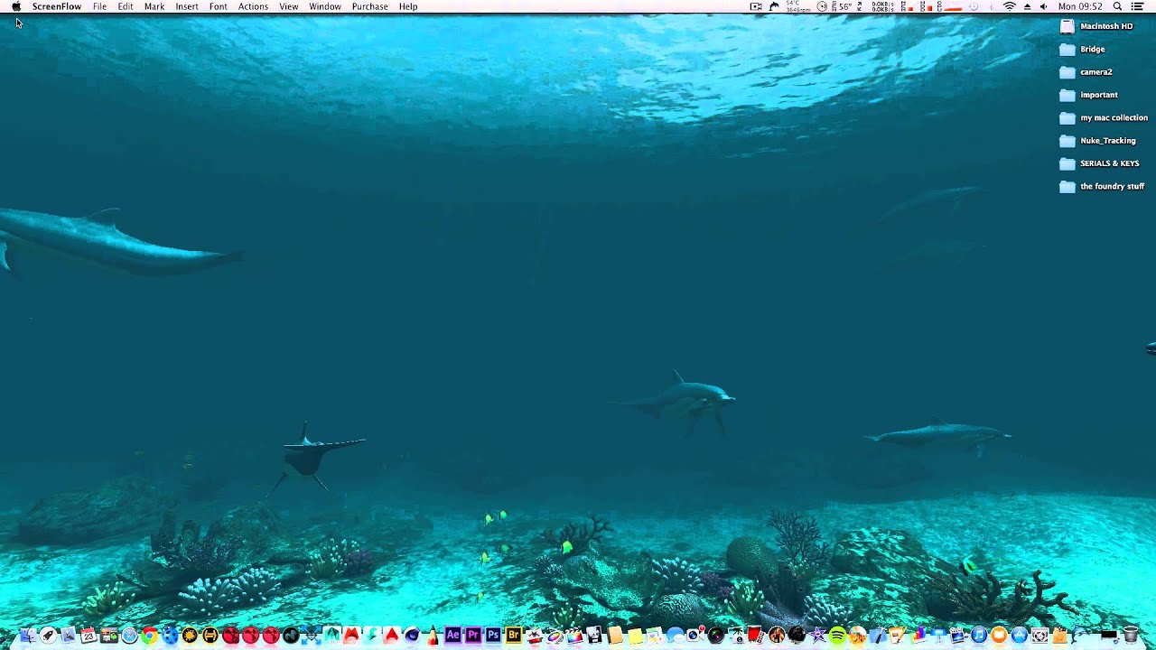 3d Wallpaper Live Fish Dolphin Animated Wallpaper For Mac 4k Displays Youtube
