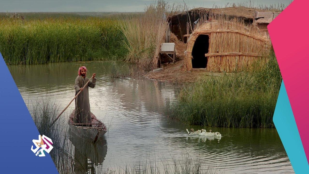 قناة العربي:شبابيك│عودة المياه إلى منطقة الأهوار تنشط السياحة في العراق