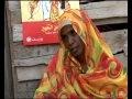 maximsnewsnetwork sudan female genital mutilation unicef amp european union