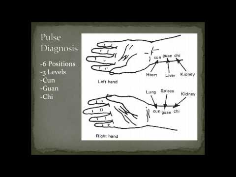 Pulse Diagnosis Overview - Diagnostic Methods in Chinese Medicine thumbnail