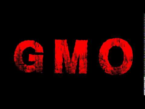 Zagrożenia GMO - prof. Jan Szyszko