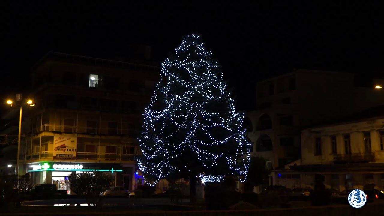 TreeΠΟΛΗ…Ολοκληρώθηκαν με επιτυχία τα Χριστούγεννα κάτω από το δέντρο