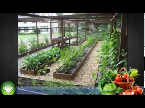 Container Garden Vegetables For Beginners Vegetable Gardening in