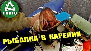 ️ Походы в Карелии. Лесные озера. Рыбалка в Карелии