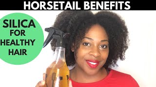 Horsetail for Faster Hair Growth| Horsetail Plant| TipTuesday