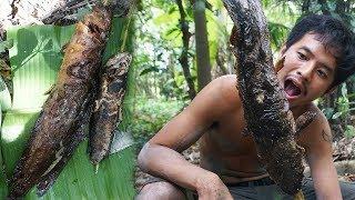 Gambar cover Documentaire sur la chasse #12   pêche truite géante dans la forêt   poisson   camping paradis