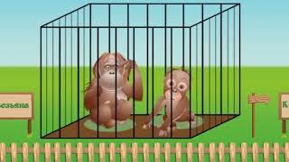 зоопарк  животные  мамы и малыши  развивающее видео для детей XLpBQ