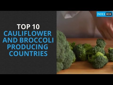 Top 10 Cauliflower and Broccoli Producing Countries
