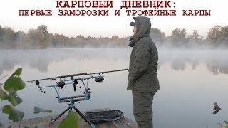 Секреты рыбалки на карпа: холодная вода. Расположение оснасток, тактика ловли и прикармливания