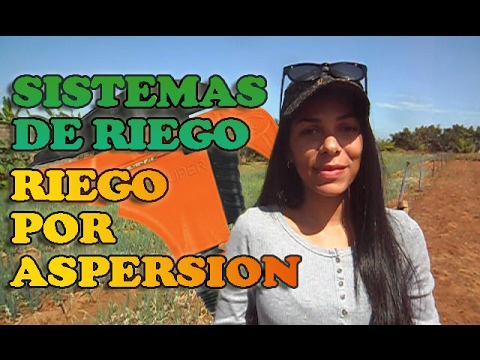 Sistemas de Riego - Riego por Aspersion thumbnail