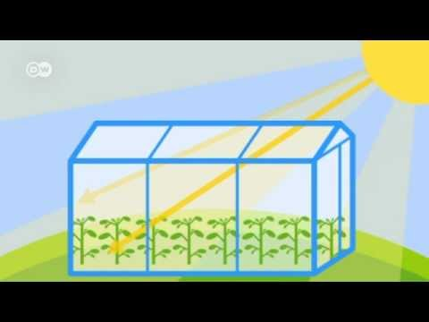 What Is The Greenhouse Effect?  Global Ideas