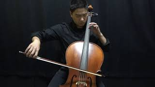 Bay Fine Strings Premiere Cello Entry Level