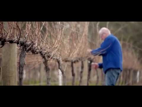 Heathcote Wine Region - our story #1