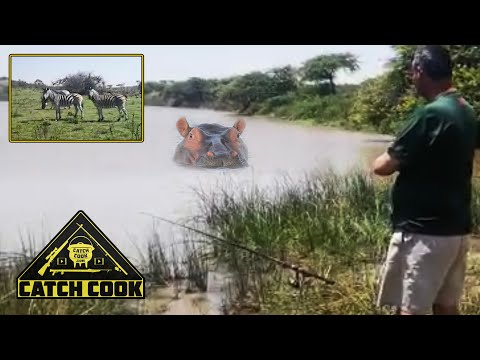 Bass & Barbel Fishing Among African Wildlife - Catch Cook, South Africa
