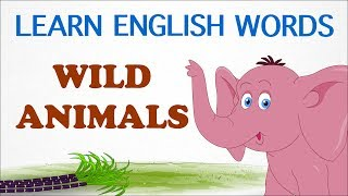 Wild Animals - Pre School - Learn English Words (Spelling) Video For Kids and Toddlers