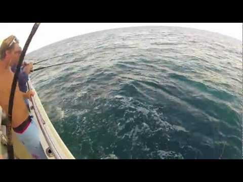 Offshore Bottom Fishing On The Majesty Party Boat In Jacksonville, FL