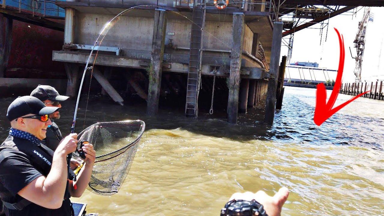 Angeln im Industriehafen! Dieser Fisch ist kaum zu stoppen!
