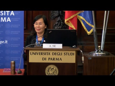 Ye Jingyi (Vice-president, University Council of Beijing University) - English