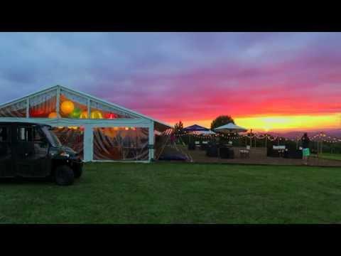 Glastonbury 2016 At Pennard Hill Farm