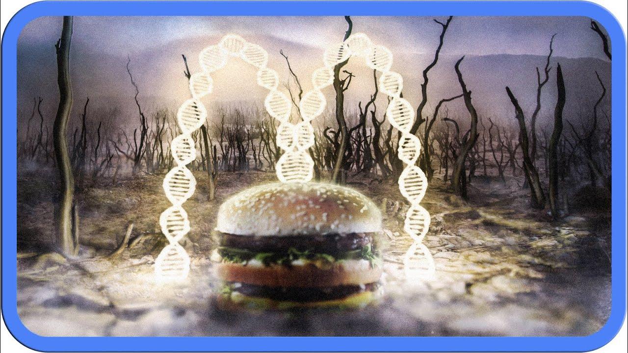 Die Wahrheit über McDonald's