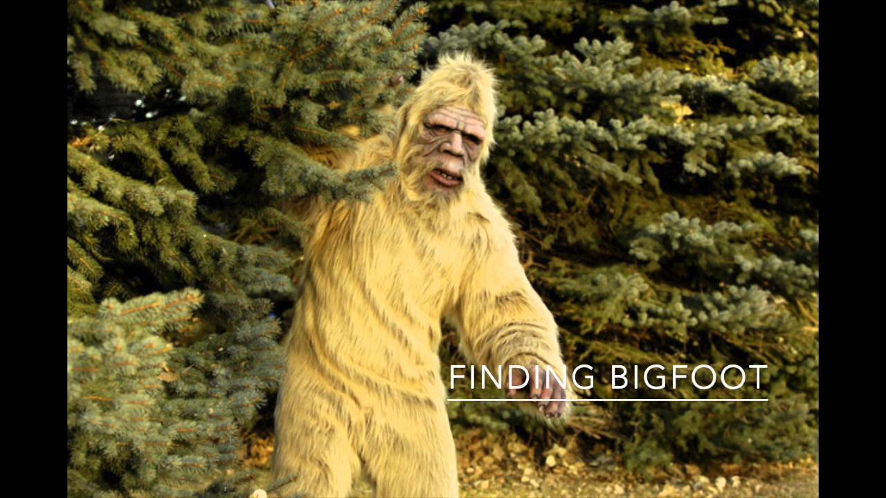 searching for sasquatch by - photo #7