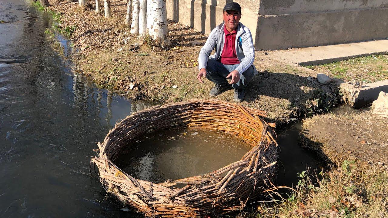 Гордость Узбекской кухни.Узбекистан.Миллионы тонн желтой моркови.