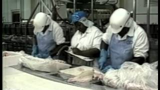 Aquaculture Processing Safety and Quality