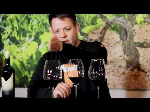 Vitis Vin I TIPS & TRICKS I Hoe kies je het juiste wijnglas I 2021