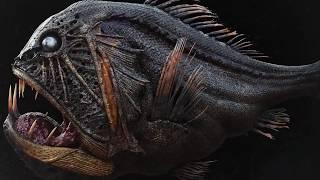 Создания Cтрашнее Мегалодона, Живущие в Марианской Впадине