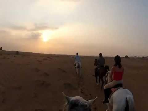 Horse Riding at Dubai Polo & Equestrian Club, 01/12/12, Ian Dmello