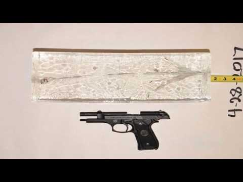 Cook County Experts Address Public Health Implications of Gun Violence
