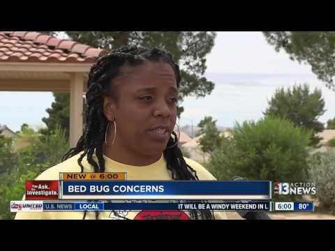 Bed bug concern at Desert Springs Hospital