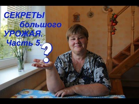 Снытко лариса владивосток отзывы 5 фотография